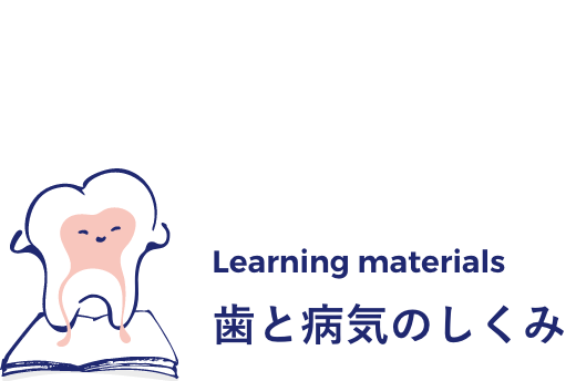 Learning Materials 歯と病気のしくみ